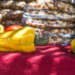 Belize cashew festival in crooked tree village