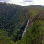 Thousand Foot Falls in Mountain Pine Ridge Belize