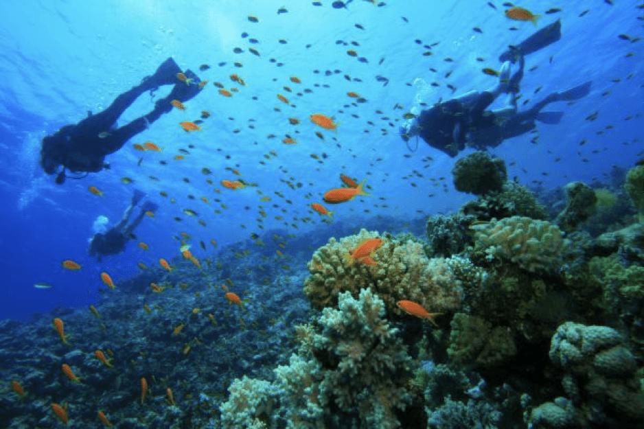 A 6-Month Escape to Belize