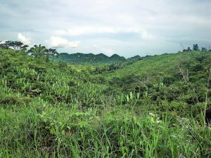Punta Gorda and The Toledo District in Belize