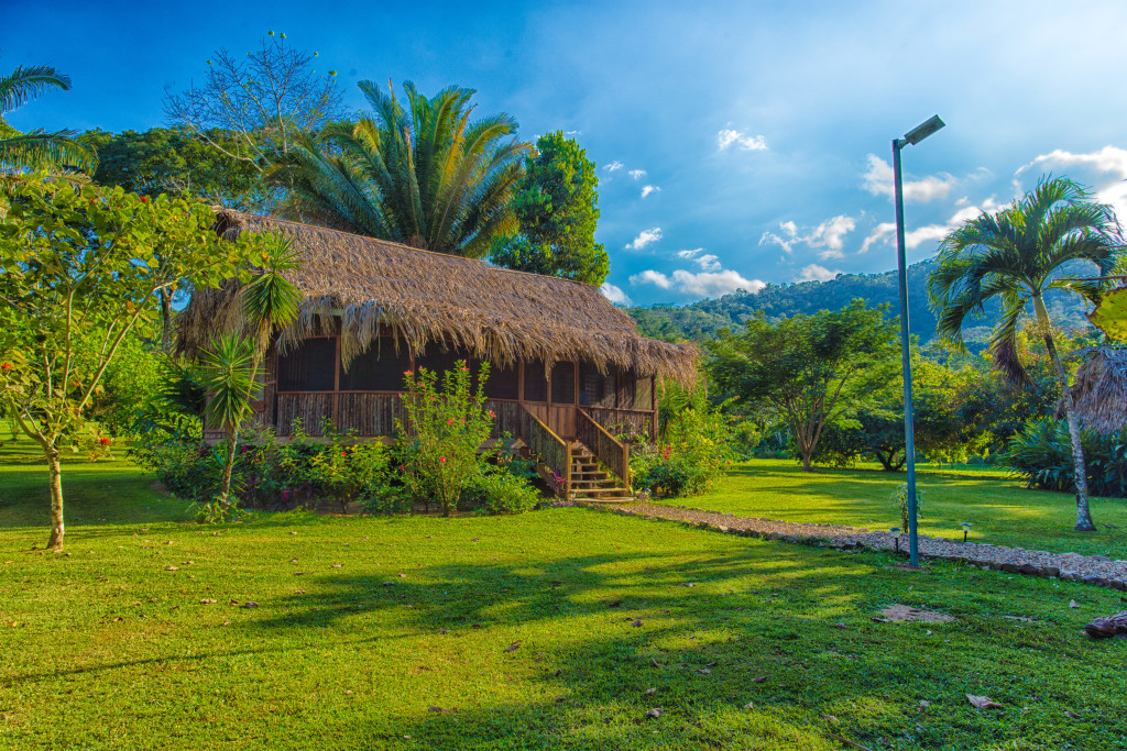 belize rainforest resort bocawina in stann creek