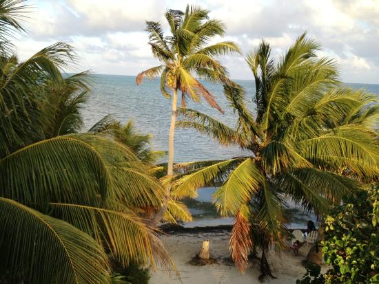 belize resorts in caye caulker