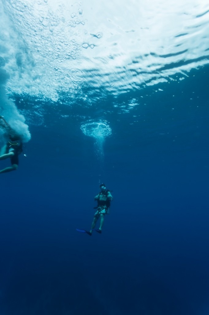 Blue Hole Belize What It S Really Like To Dive The Blue Hole