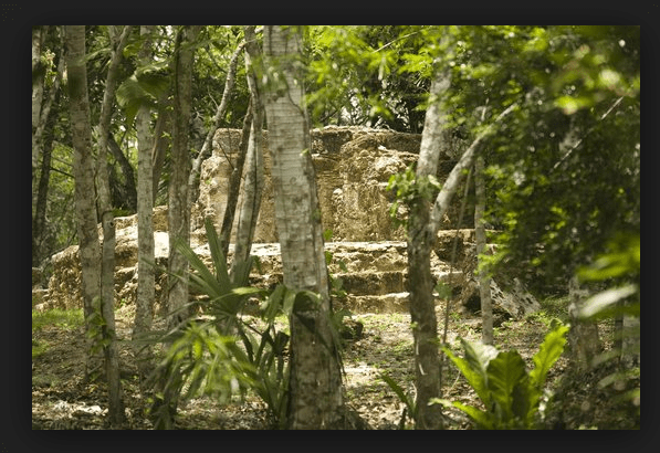El Pilar Mayan Ruins - Hidden Beneath The Belize Jungle
