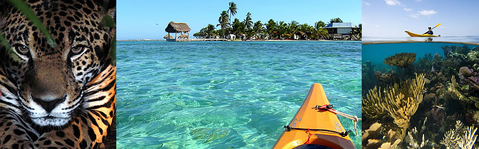 Quintessential Belize Adventures