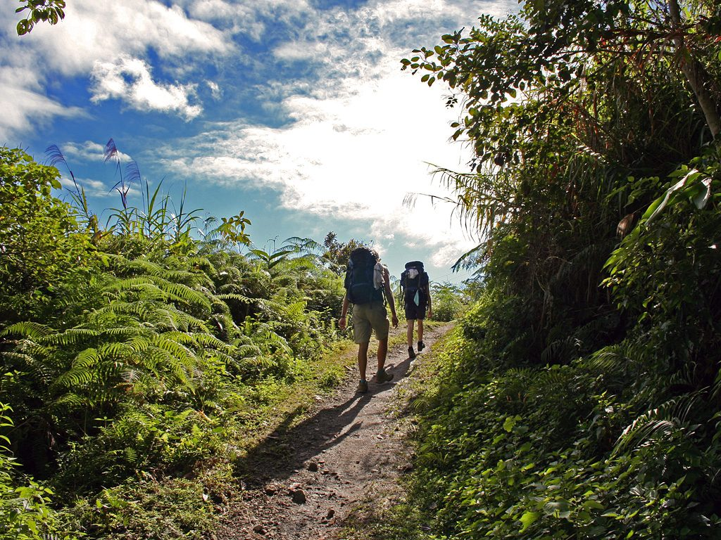Top Hiking Destinations In Belize Where To Hike In Belize