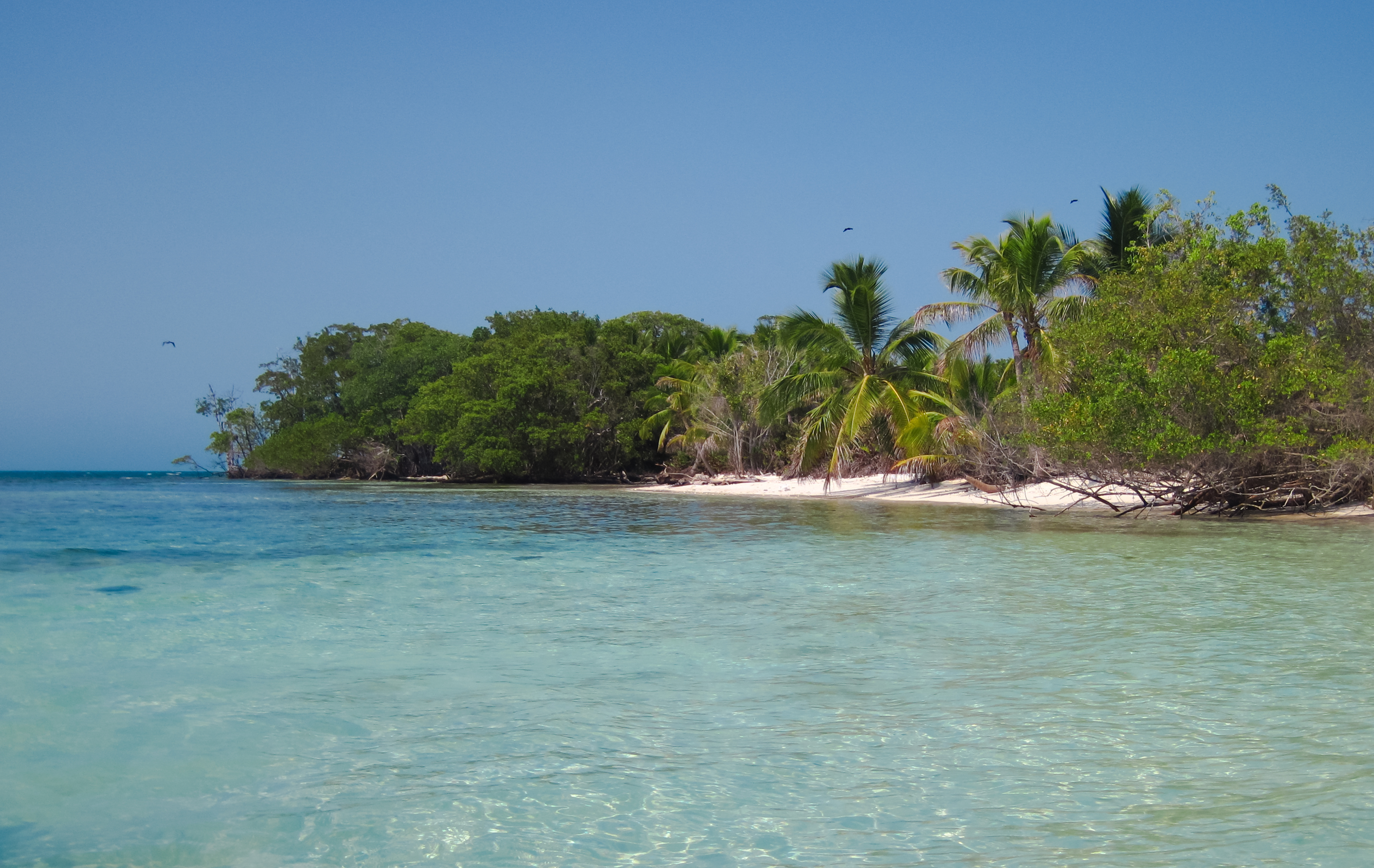 The Snake Cayes in Belize | Belize Offshore Islands
