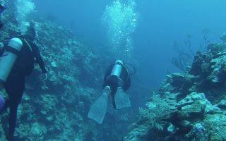 Diving Esmeralda Canyon in Belize