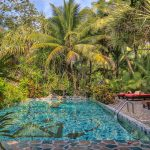 belize jungle resort