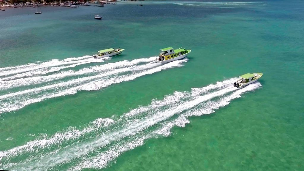 Ambergris Caye Or Caye Caulker By Water Taxi