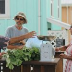 7 factors that make Carmelita Gardens in Belize the right choice for a self-sufficient and sustainable life