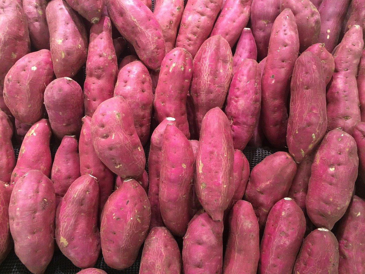 Belizean Sweet Potato Pound