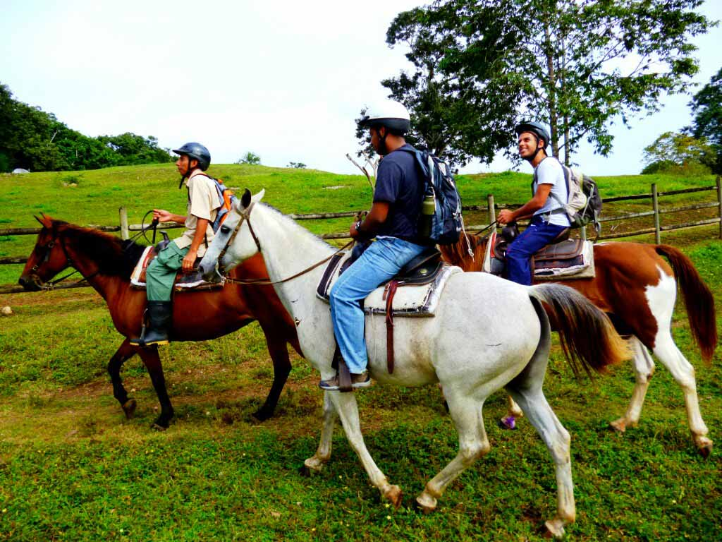 Horseback Riding in Belize