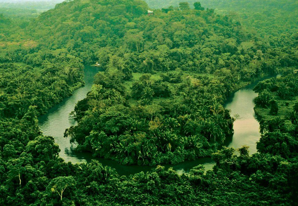 Belize Jungle Experiences
