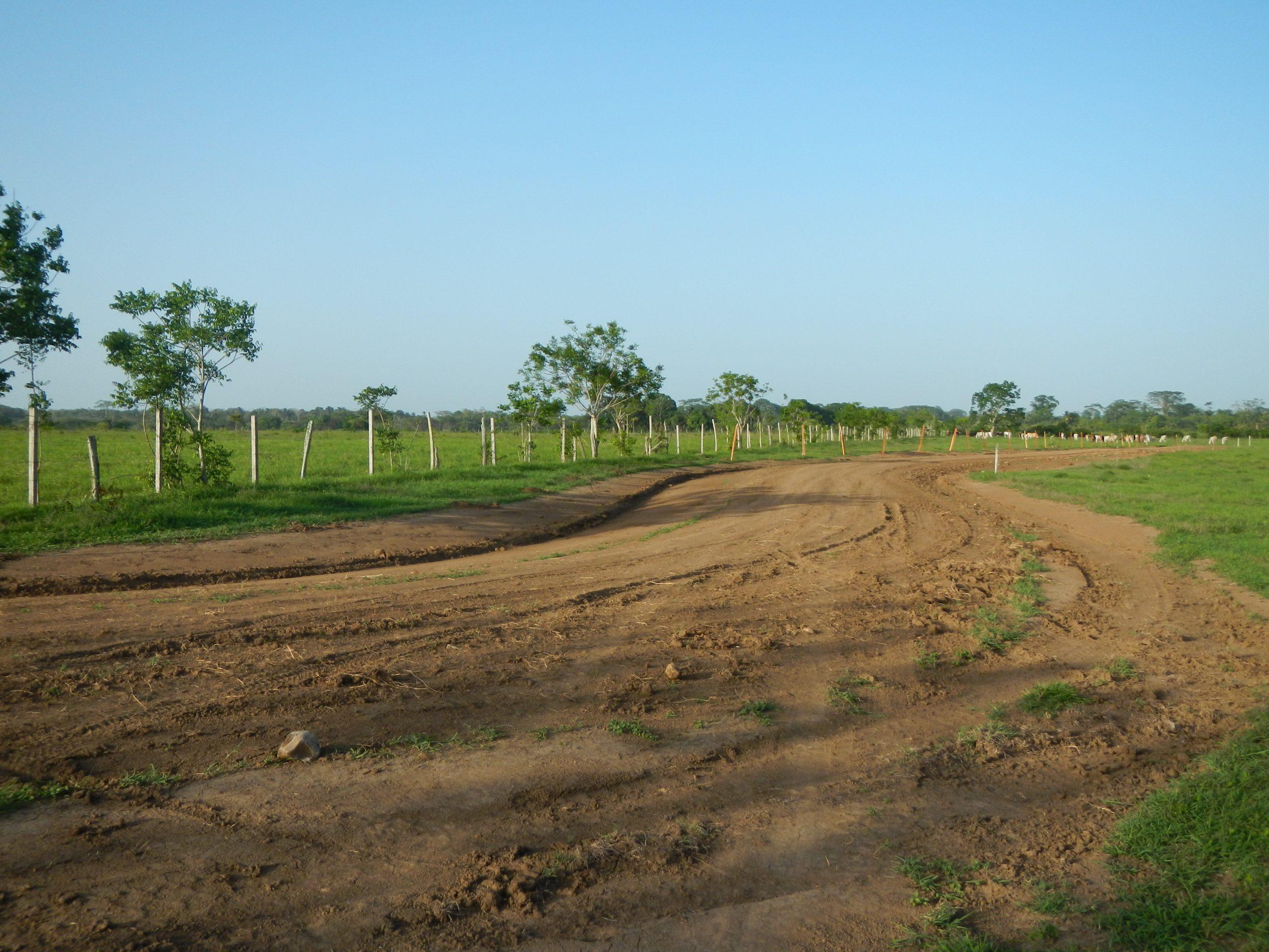 invest in Belize real estate