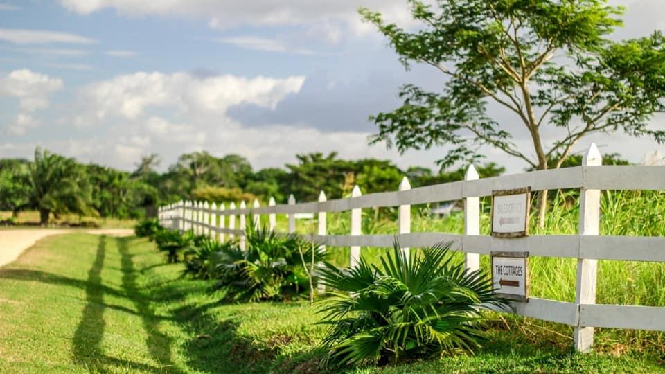 Belize Real Estate Tours