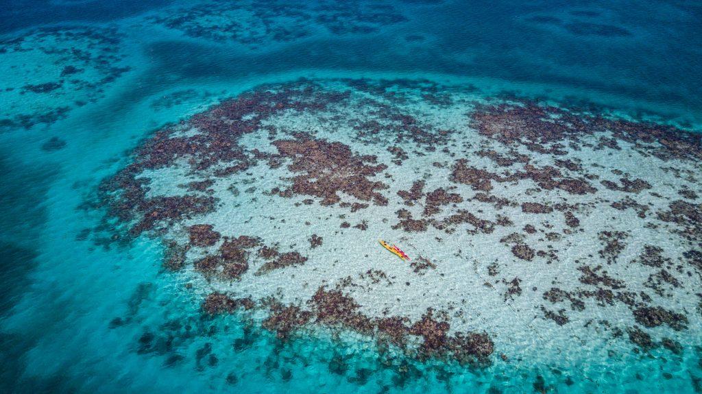Belize Wellness Vacation